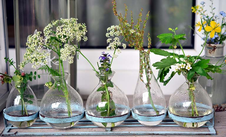 Different wildflowers arranged in five glass vases