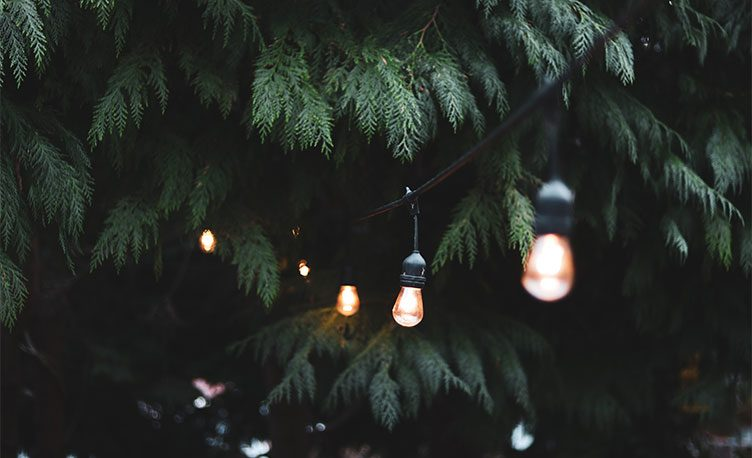 Summer garden party decorations and lighting