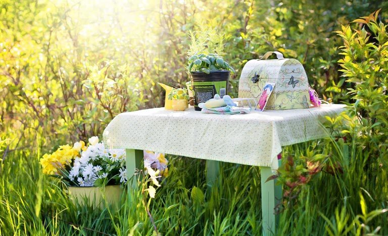 Herbs, flower seeds and gardening accessories on table in garden