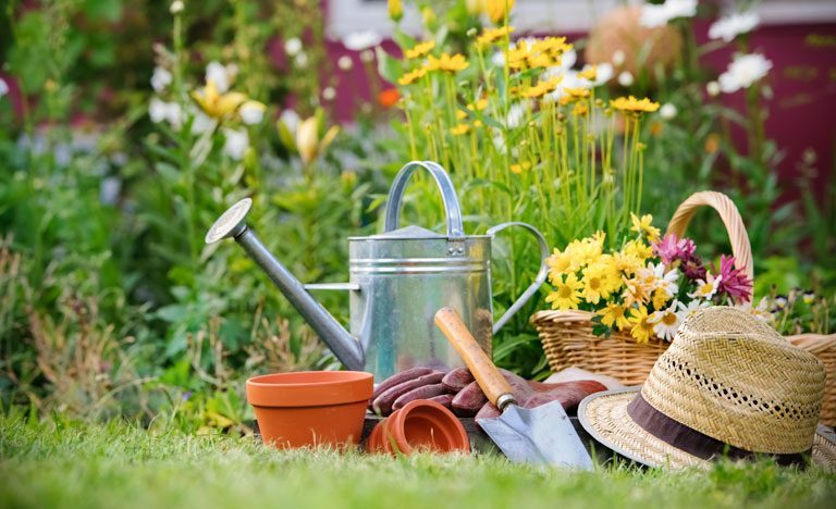 Watering can, plant pots, spade, hat, gloves and flowers on garden lawn